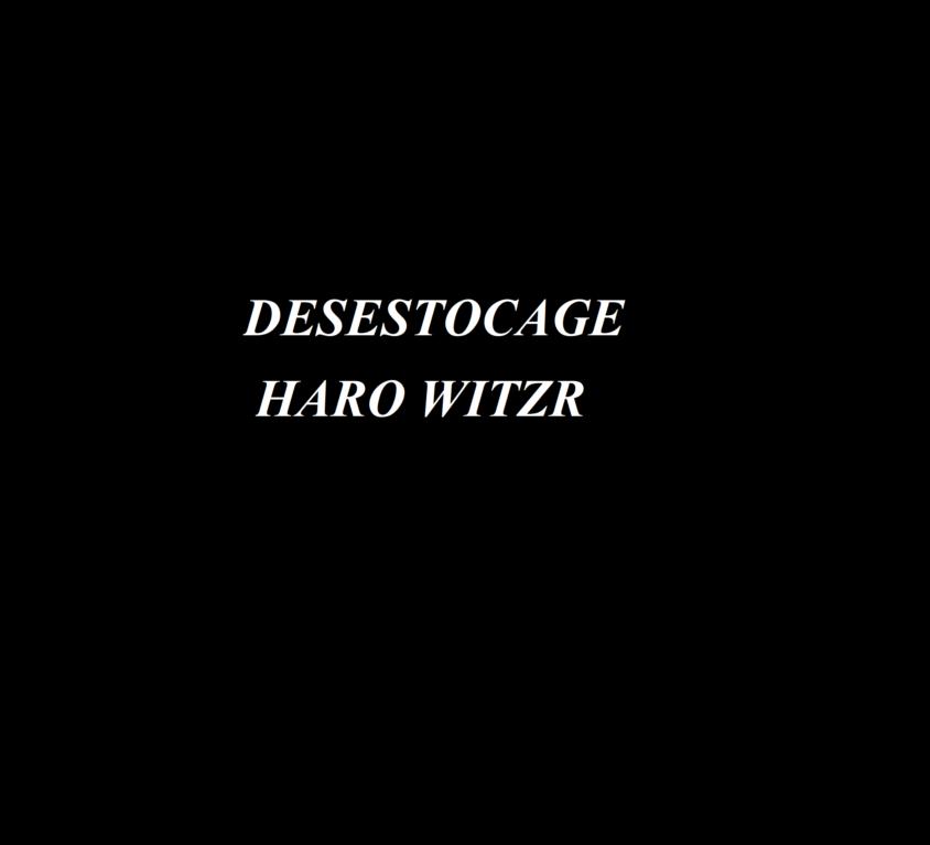 DESESTOCAGE HARO WITZR